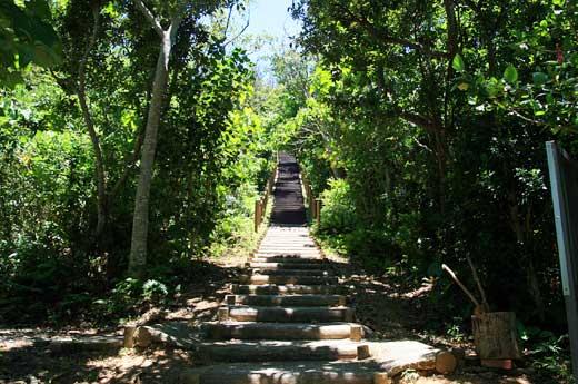 大岳展望台へと続く階段