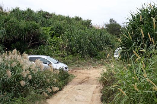 ティーヌ浜へ続く道